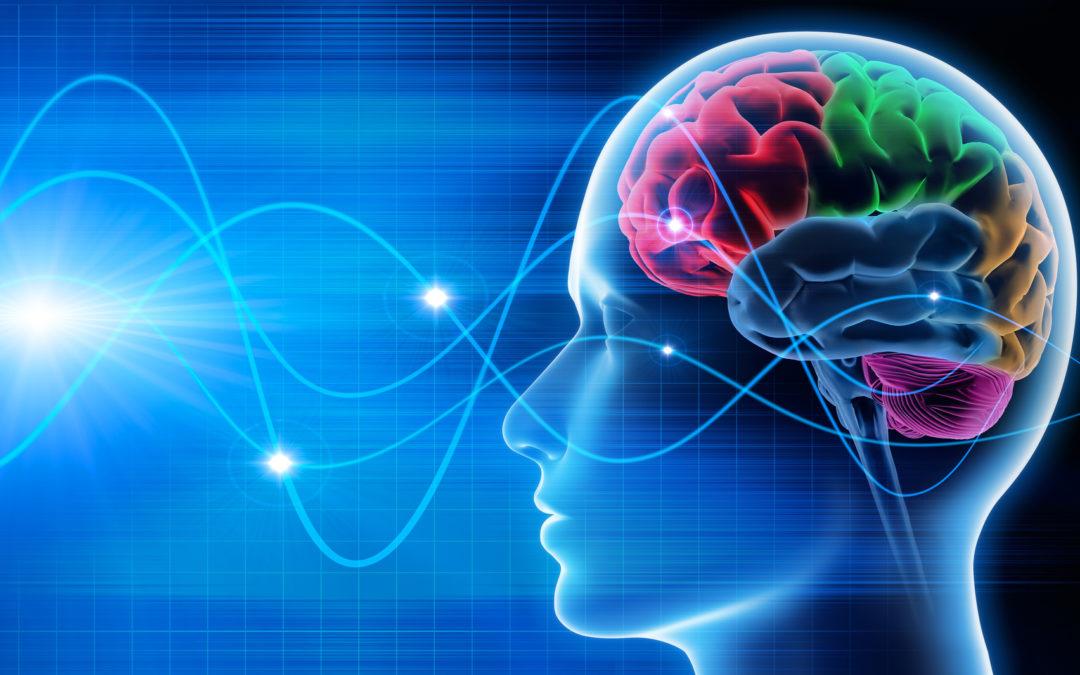 Wie mein Kopf funktioniert – Wie Neurowissenschaft den Vertrieb verändert